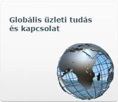 Globális üzleti tudás és kapcsolat